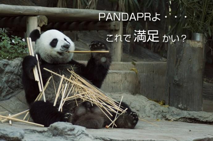 panda_last