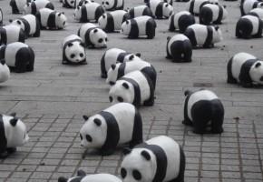 PANDAPRから迷惑メールが届いたので、代わりにパンダをアピールしておくことにする