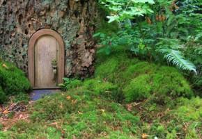 『まさにワンダーランド』イギリスの森で「妖精の家」が急増!?立ち退きを迫られる事態に…